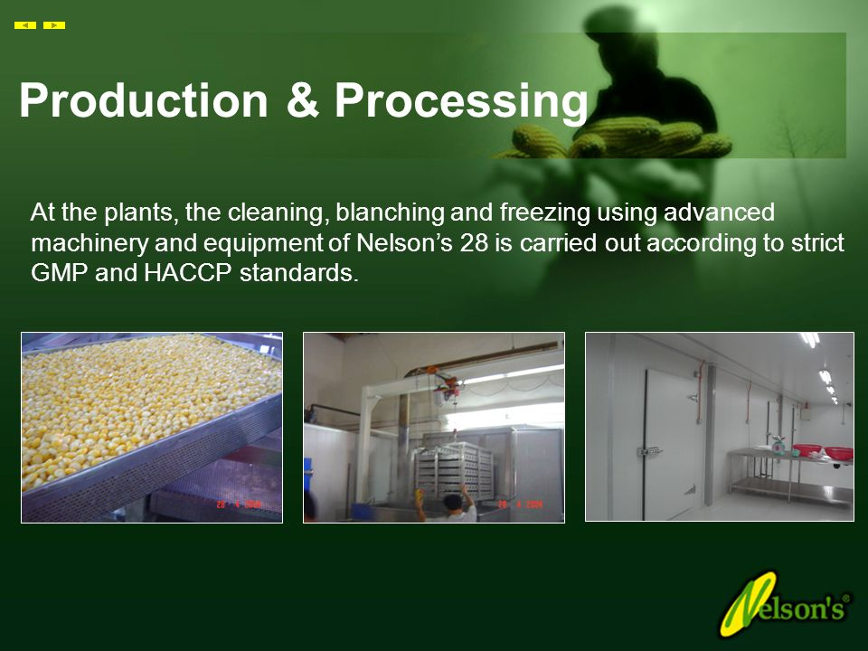 Production & Processing