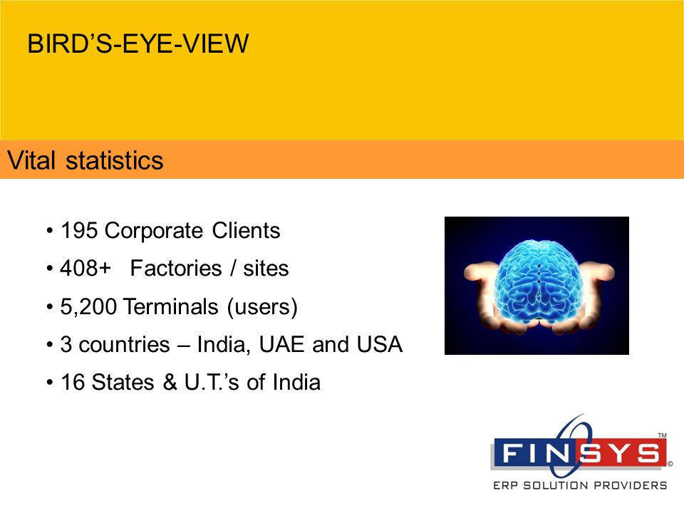 BIRD'S-EYE-VIEW Vital statistics 195 Corporate Clients