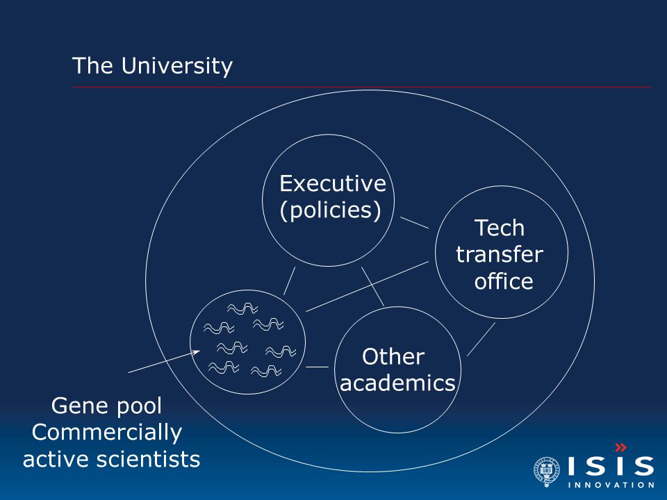 The University Executive. (policies) Tech. transfer. office. Gene pool. Commercially. active scientists.