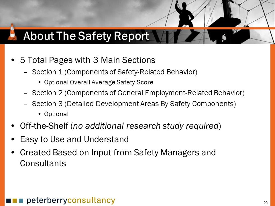 About The Safety Report
