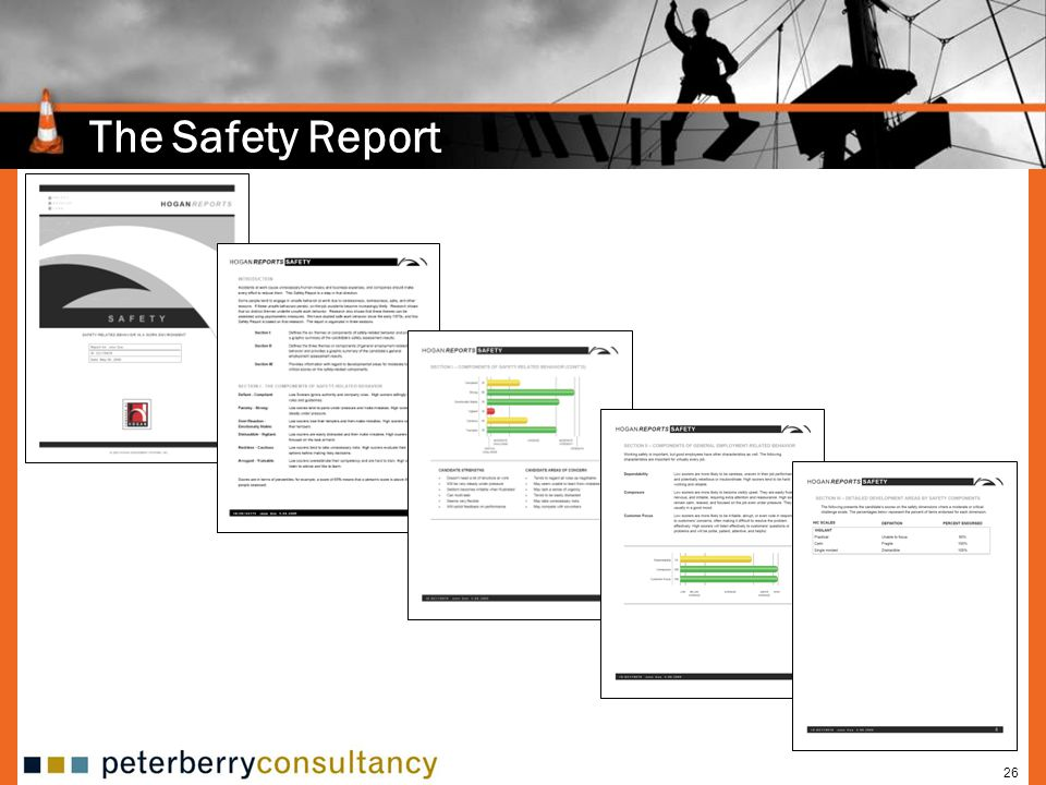 The Safety Report 26