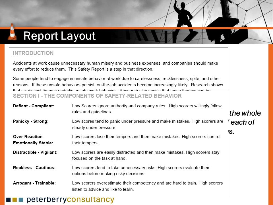 Report Layout Provides information on the whole report and definitions of each of the six safety dimensions.