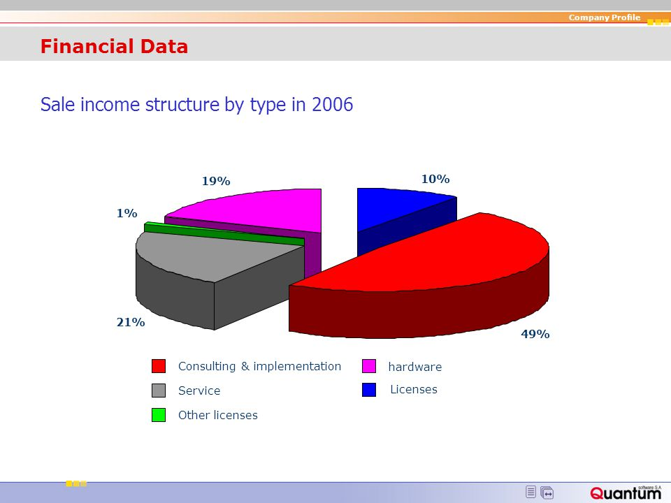 Sale income structure by type in 2006