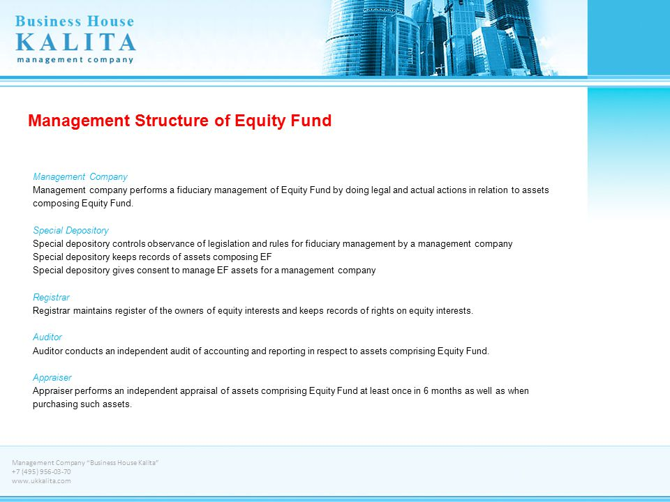 Management Structure of Equity Fund