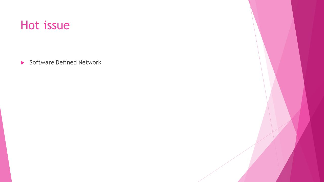 Hot issue Software Defined Network