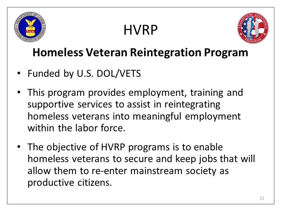 Homeless Veteran Reintegration Program