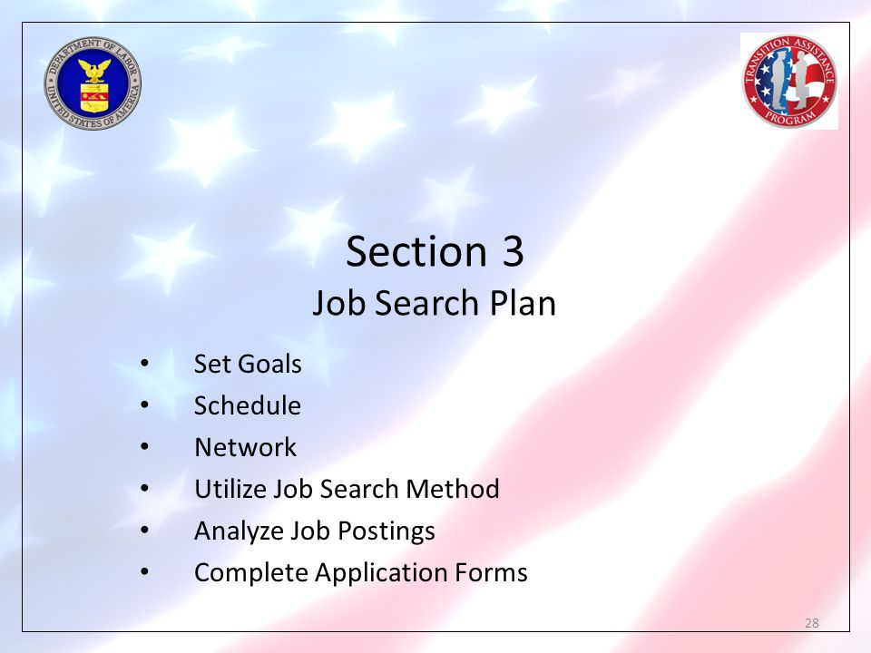 Section 3 Job Search Plan