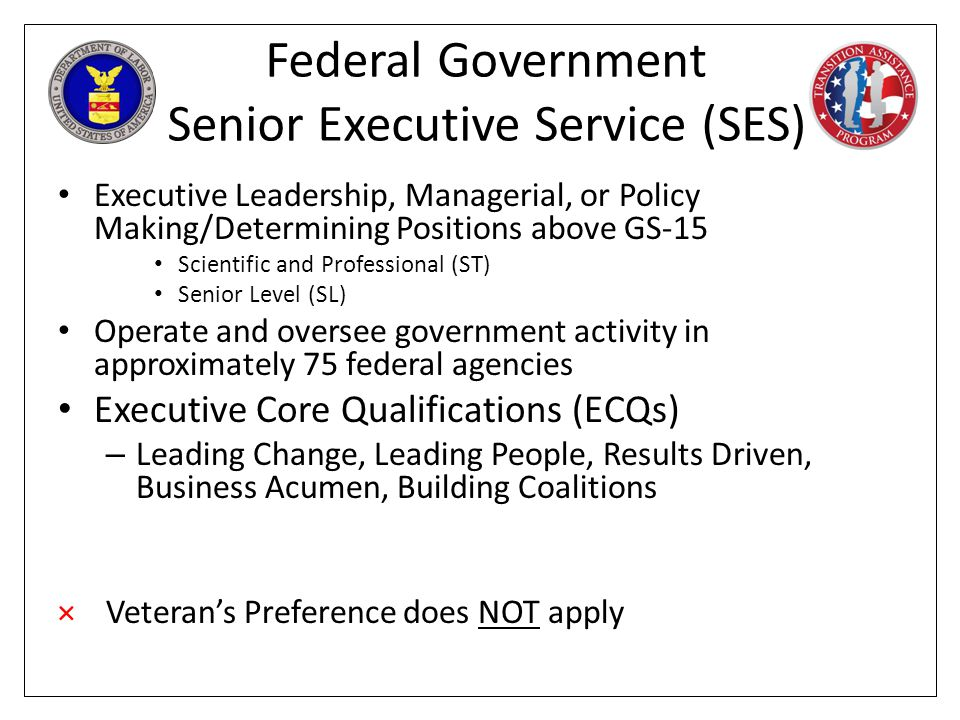 Federal Government Senior Executive Service (SES)