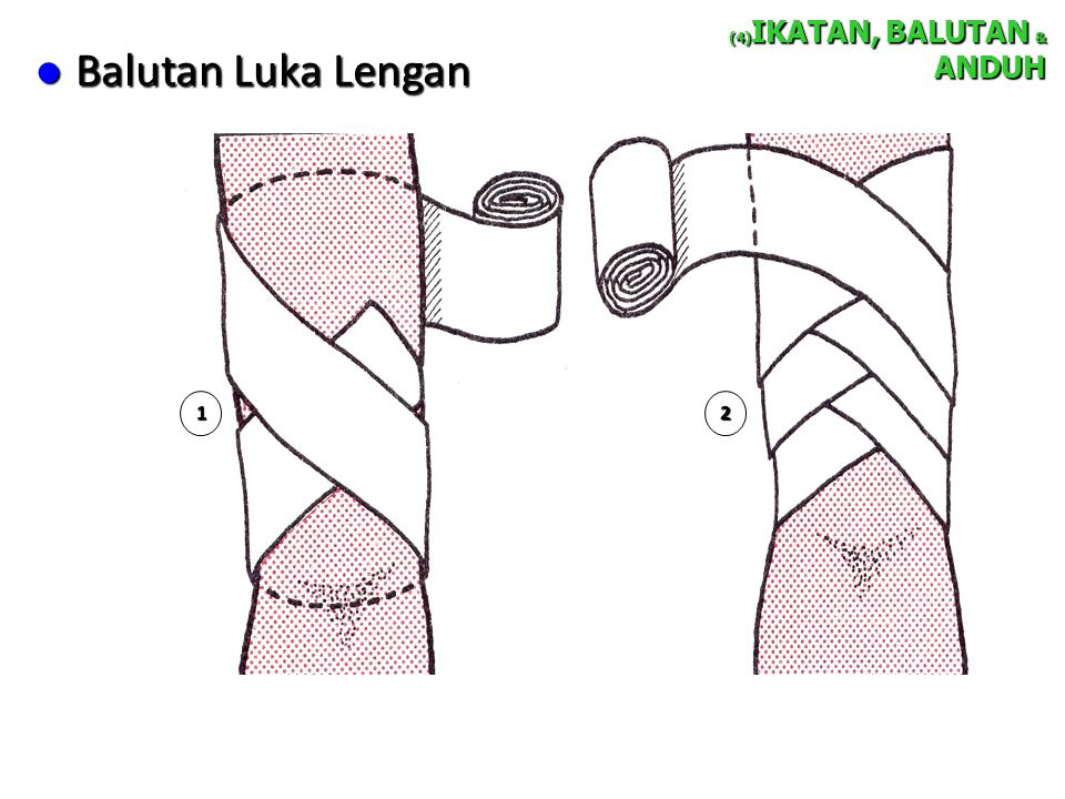 (4)IKATAN, BALUTAN & ANDUH