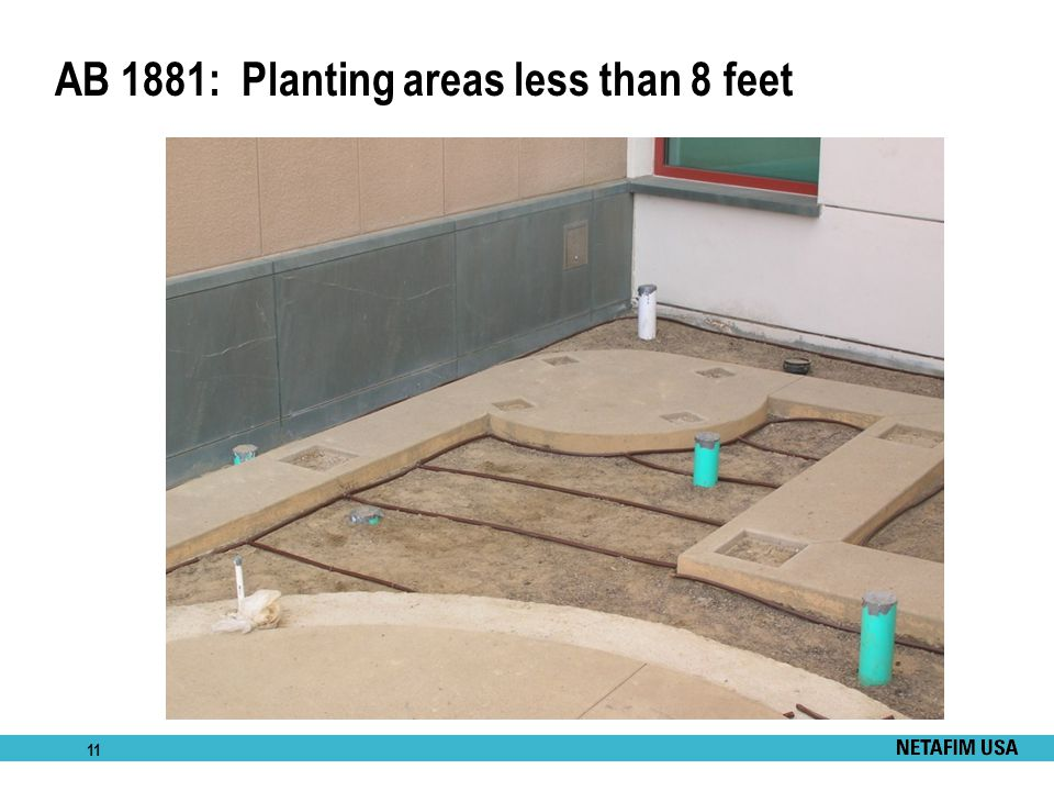 AB 1881: Planting areas less than 8 feet