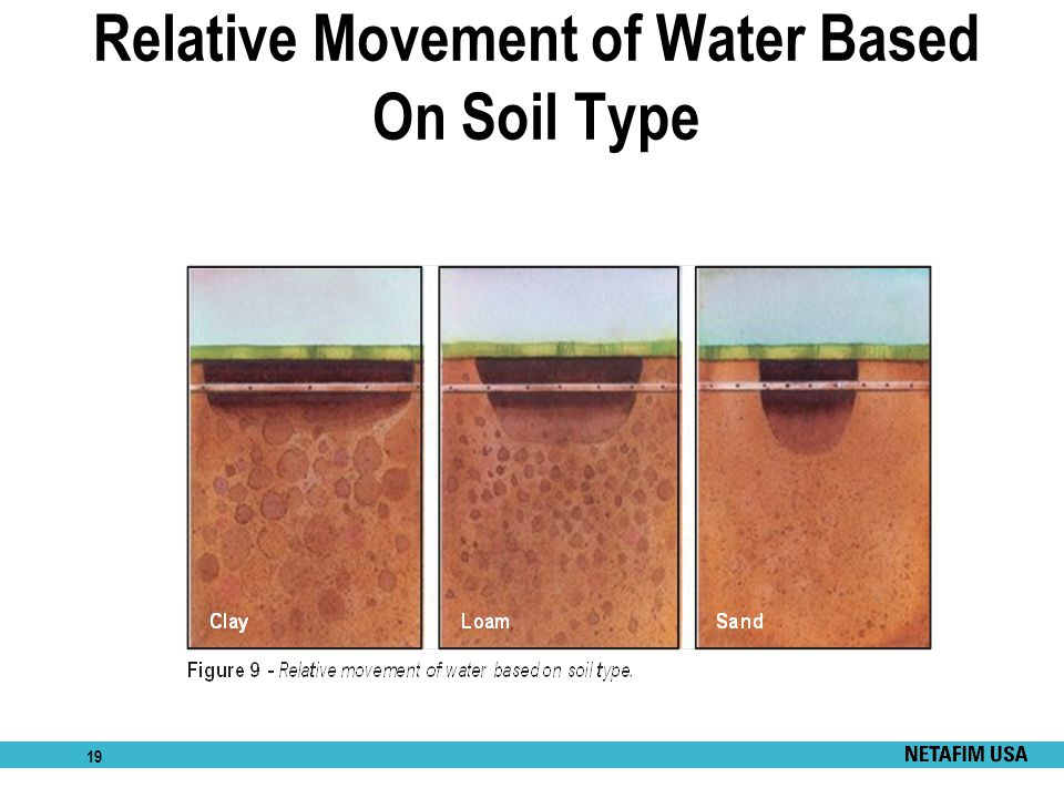 Relative Movement of Water Based On Soil Type