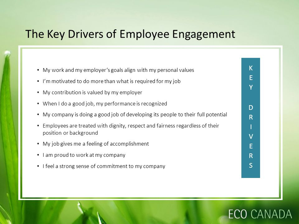 The Key Drivers of Employee Engagement