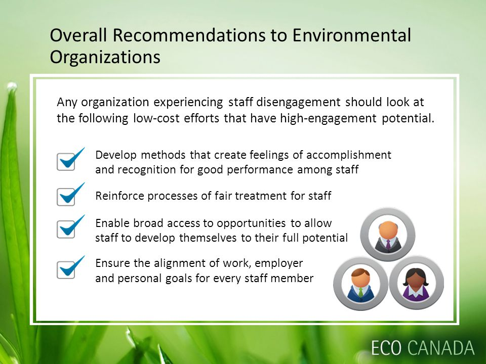 Overall Recommendations to Environmental Organizations