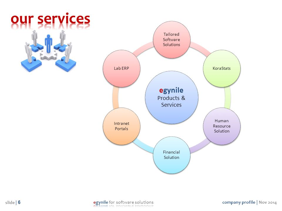 our services egynile Products & Services Tailored Software Solutions