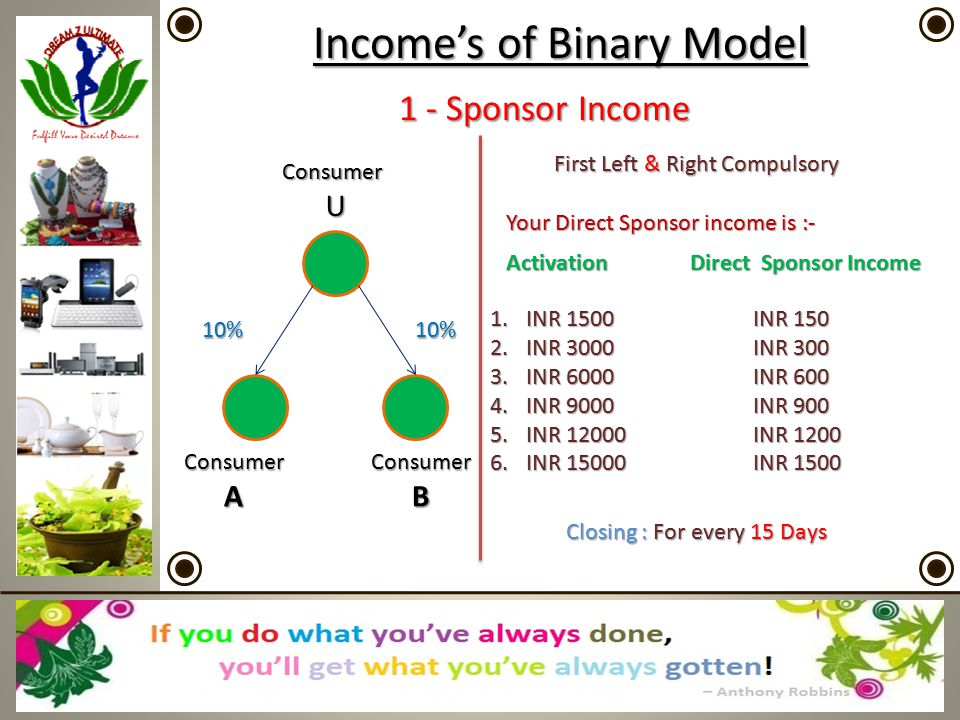 Income's of Binary Model