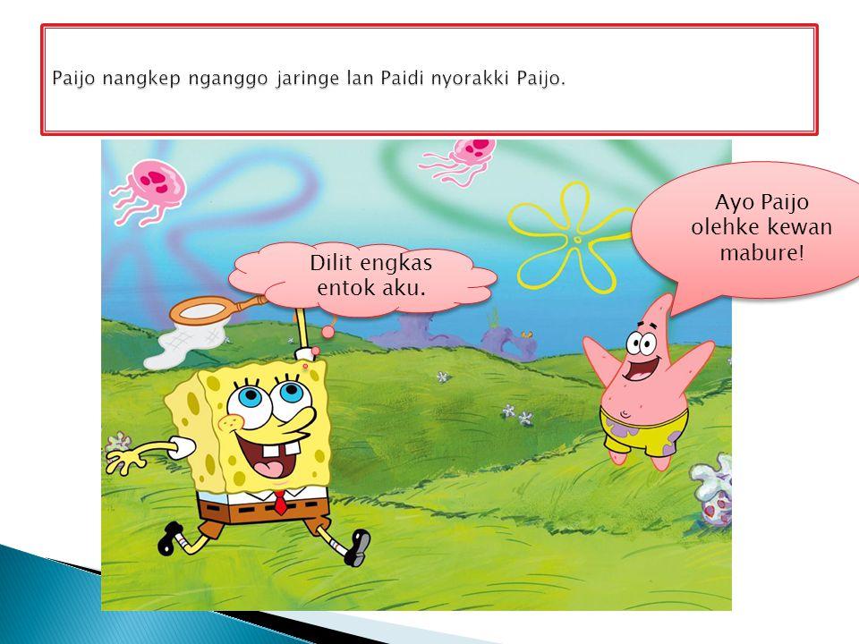 Paijo nangkep nganggo jaringe lan Paidi nyorakki Paijo.