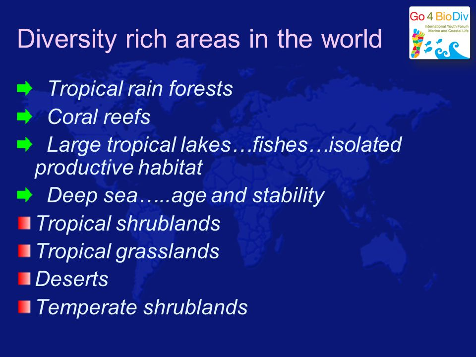 Diversity rich areas in the world