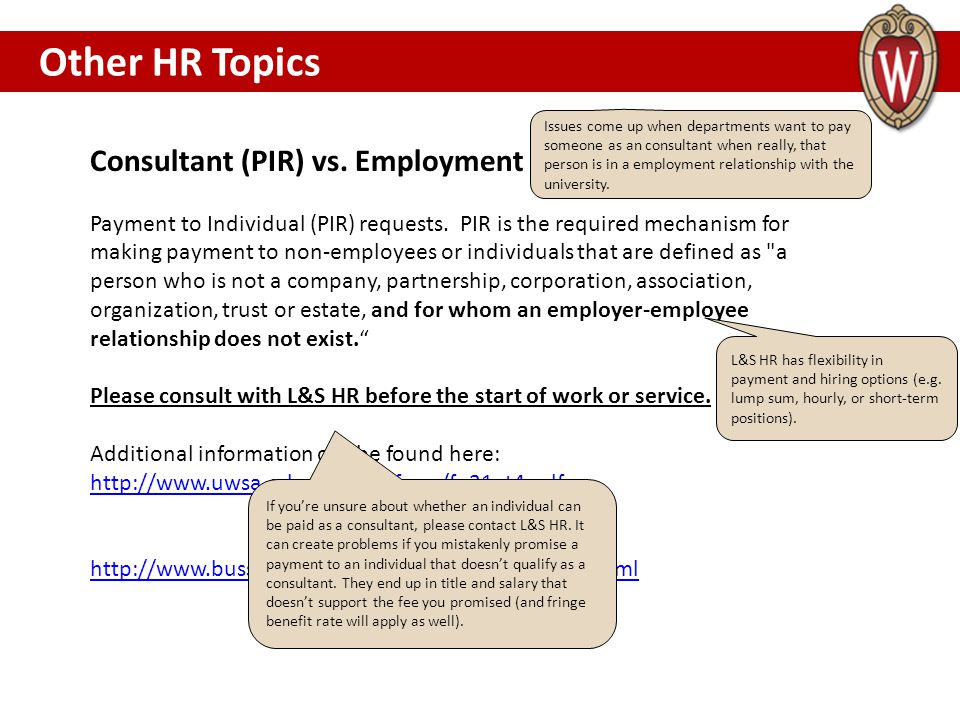 Other HR Topics Consultant (PIR) vs. Employment OTHER HR TOPICS………