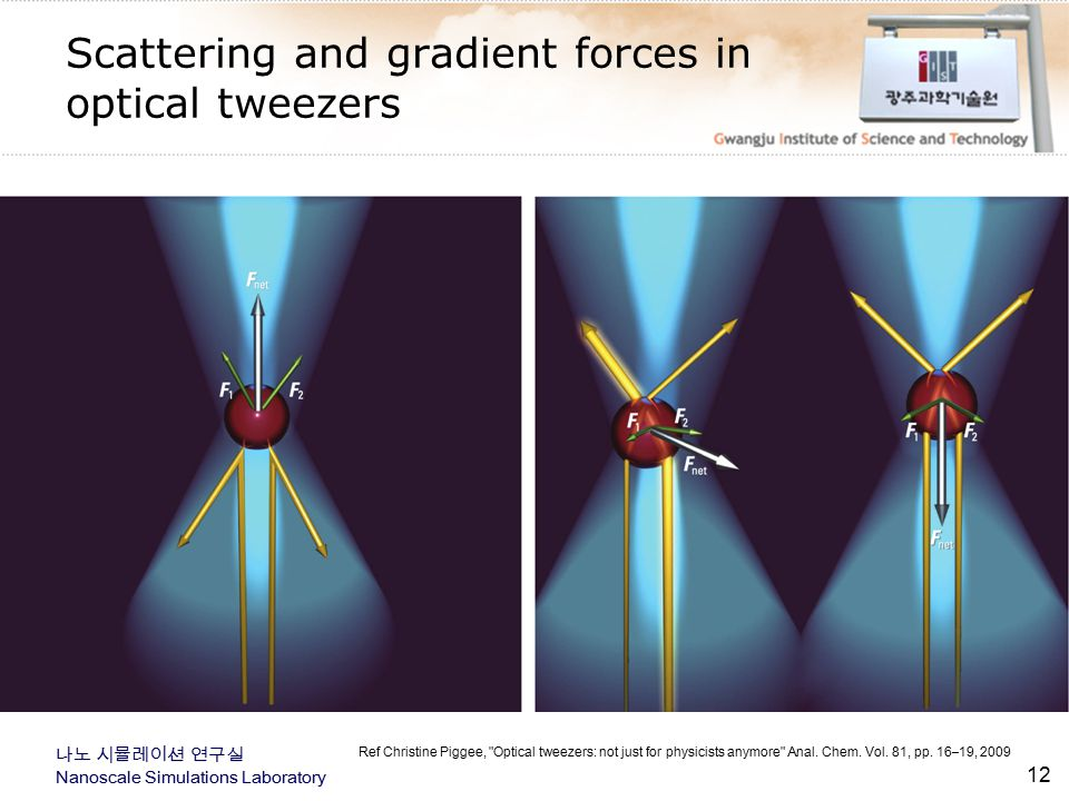 Scattering and gradient forces in optical tweezers