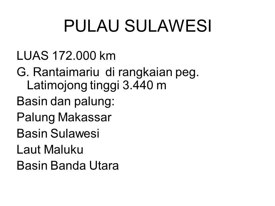 PULAU SULAWESI LUAS 172.000 km. G. Rantaimariu di rangkaian peg. Latimojong tinggi 3.440 m. Basin dan palung: