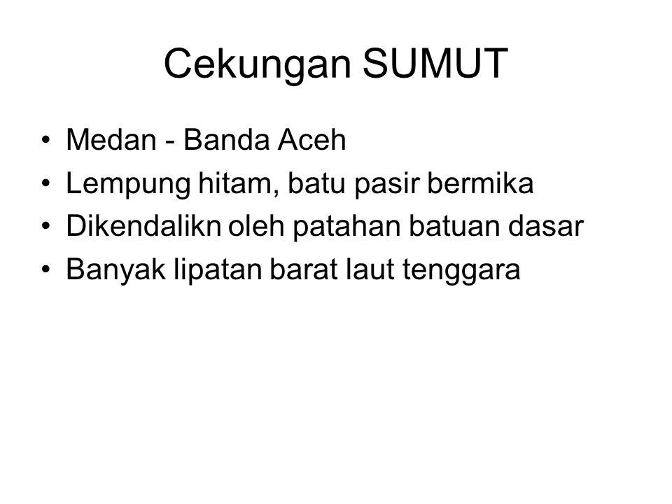 Cekungan SUMUT Medan - Banda Aceh Lempung hitam, batu pasir bermika