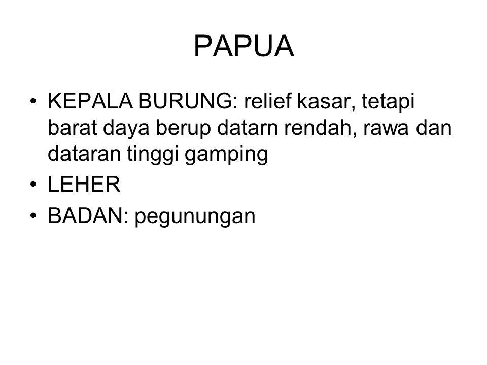 PAPUA KEPALA BURUNG: relief kasar, tetapi barat daya berup datarn rendah, rawa dan dataran tinggi gamping.
