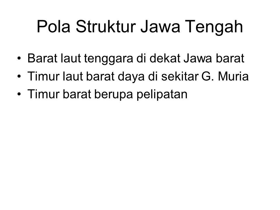 Pola Struktur Jawa Tengah