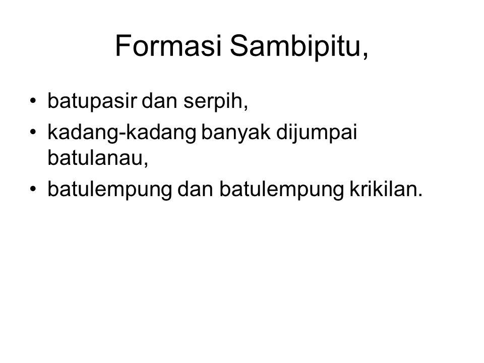 Formasi Sambipitu, batupasir dan serpih,