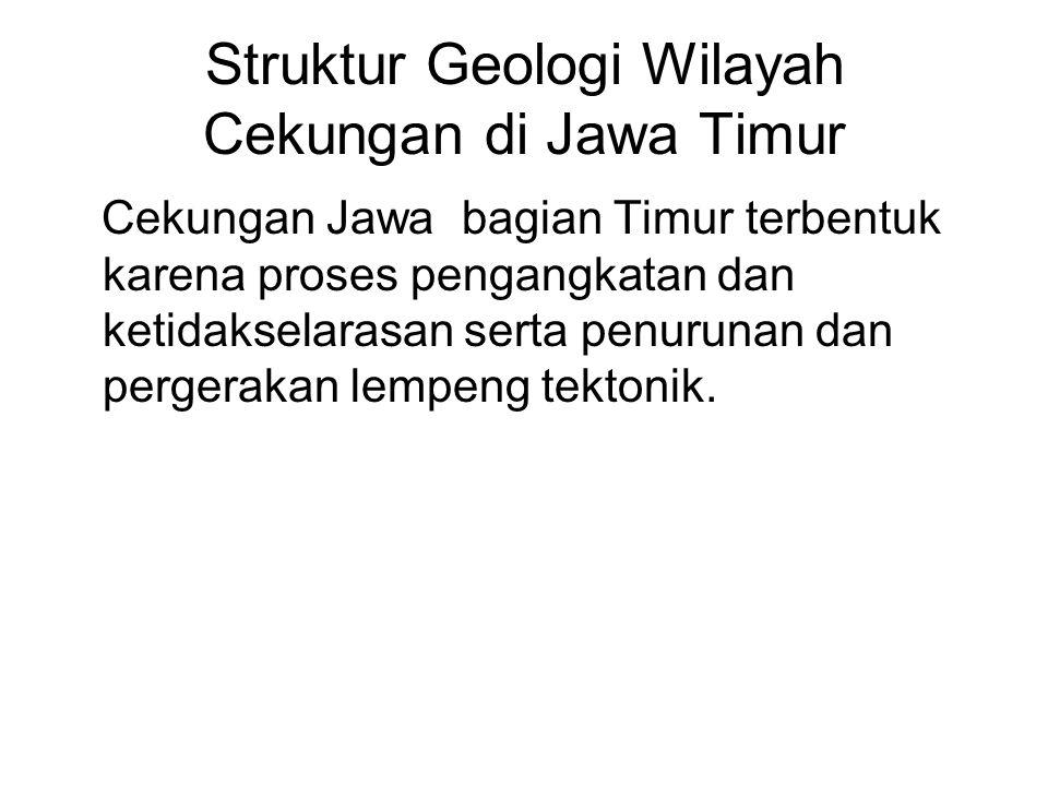 Struktur Geologi Wilayah Cekungan di Jawa Timur