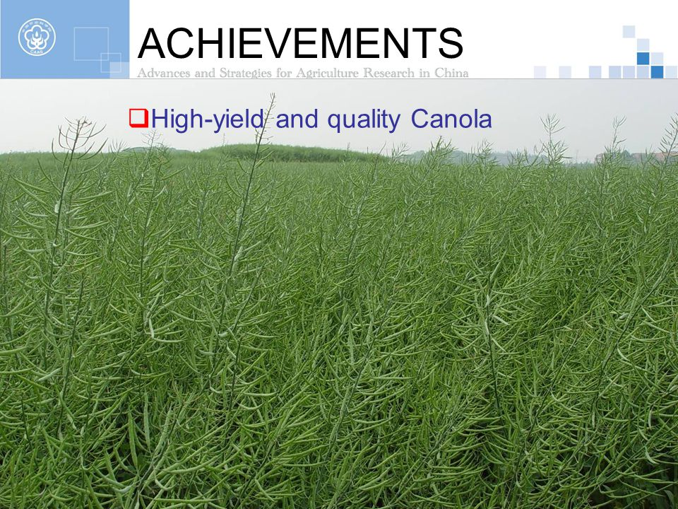 ACHIEVEMENTS High-yield and quality Canola