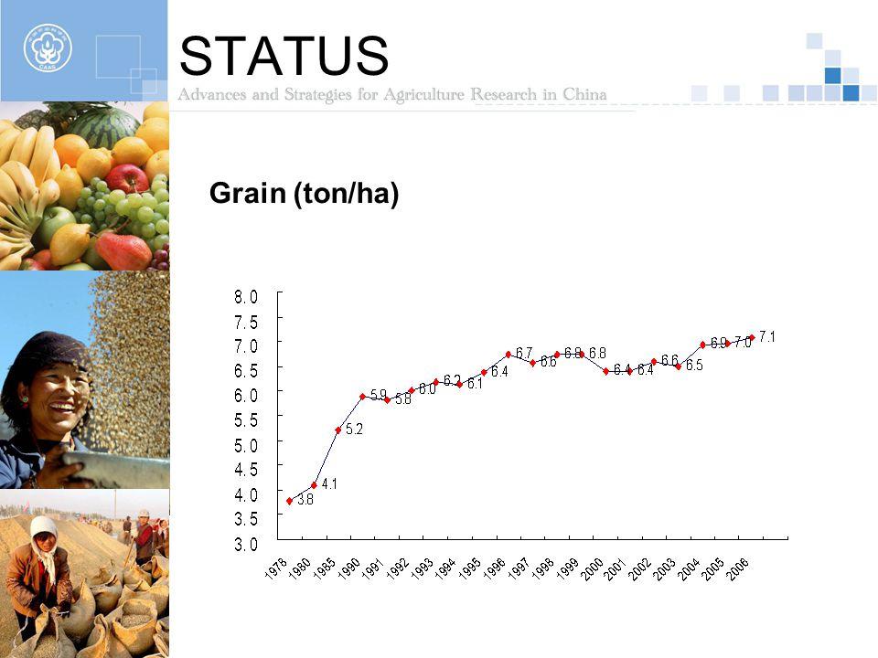 STATUS Grain (ton/ha)