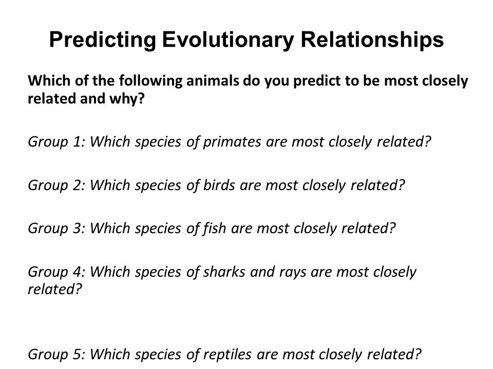 Predicting Evolutionary Relationships