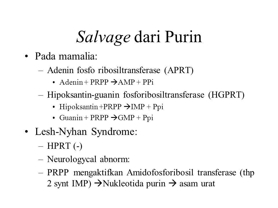 Salvage dari Purin Pada mamalia: Lesh-Nyhan Syndrome: