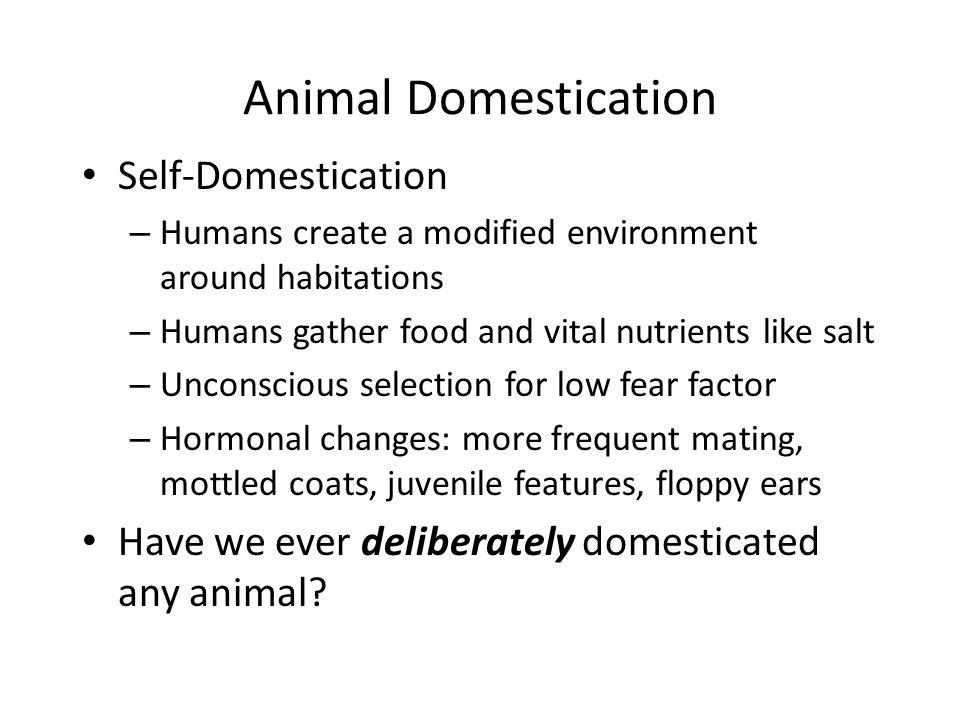 Animal Domestication Self-Domestication