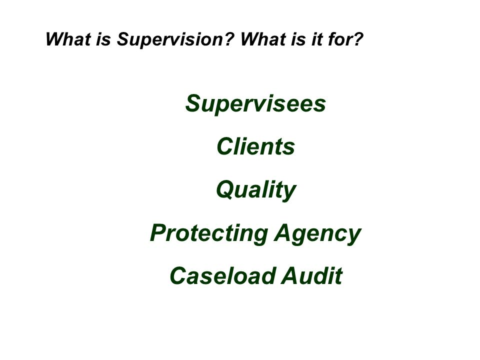 Supervisees Clients Quality Protecting Agency Caseload Audit