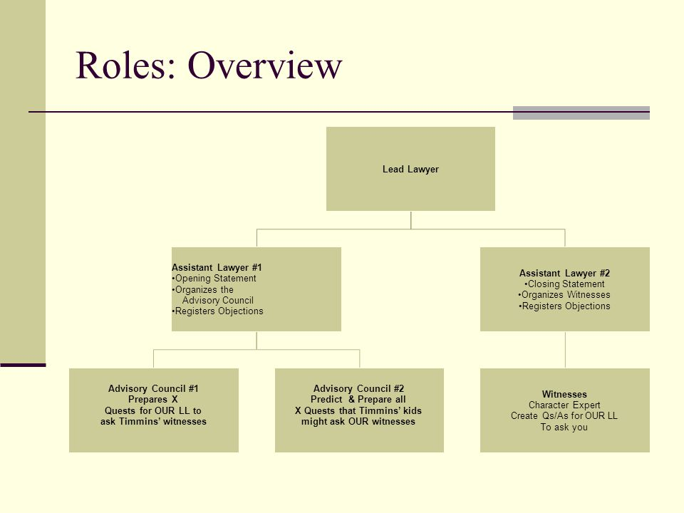 Roles: Overview Lead Lawyer Assistant Lawyer #1 Opening Statement