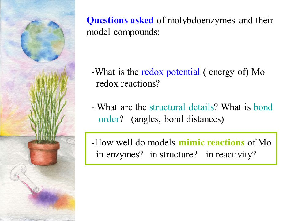Questions asked of molybdoenzymes and their model compounds: