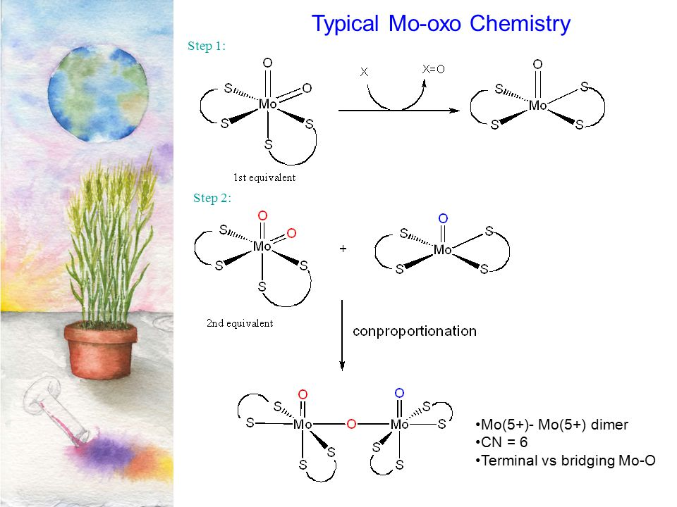 Typical Mo-oxo Chemistry