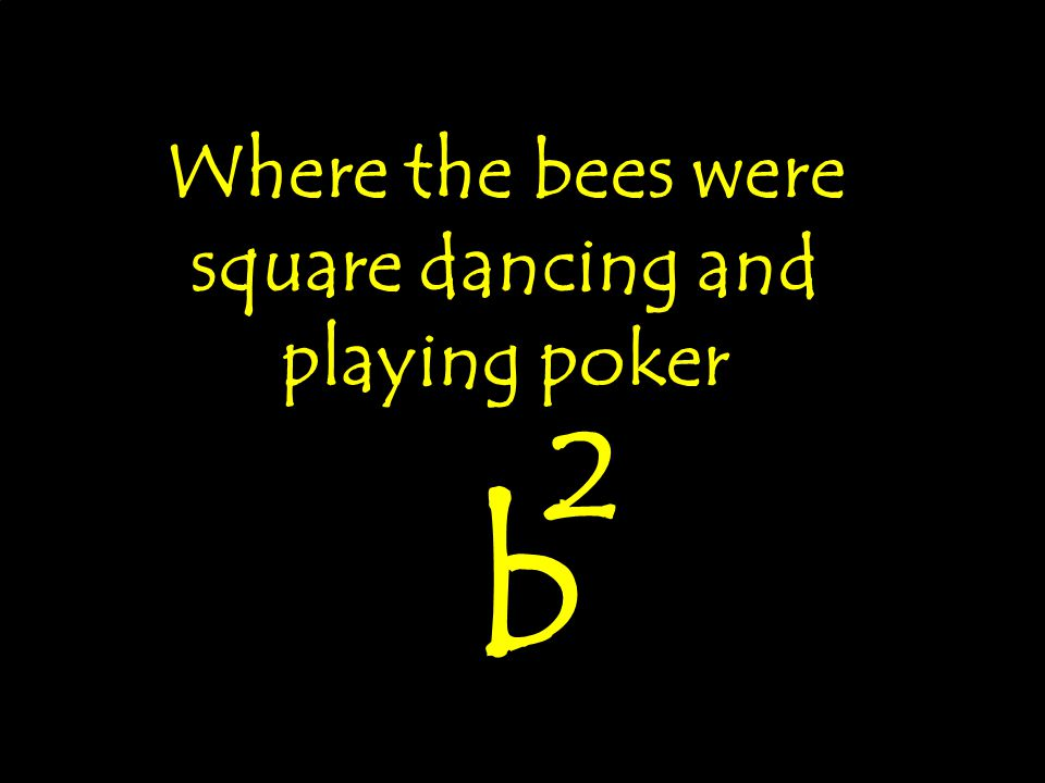 Where the bees were square dancing and playing poker