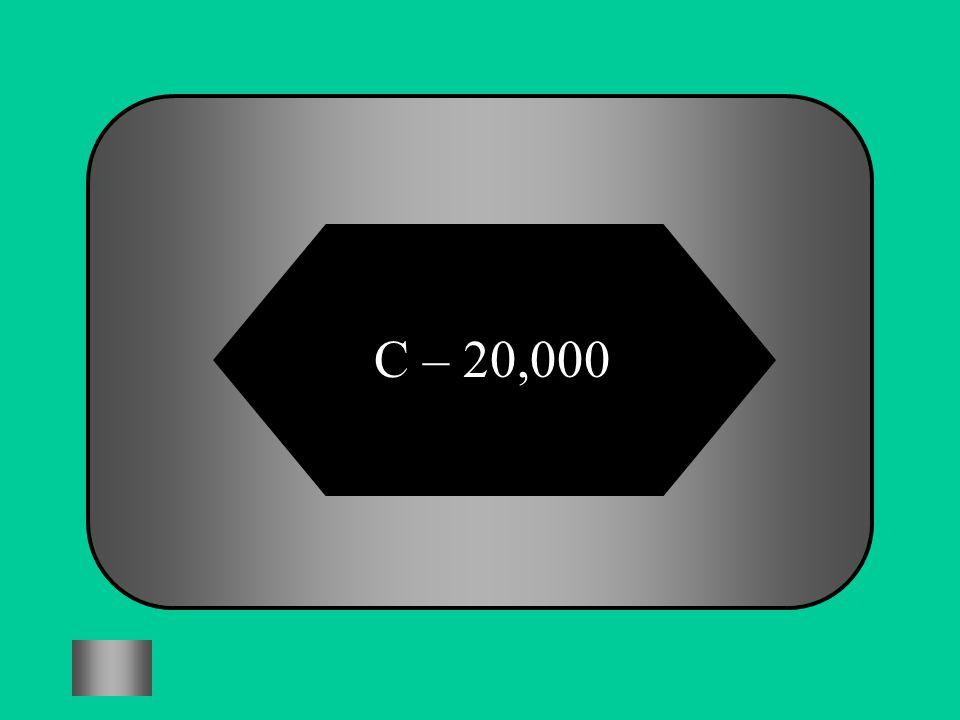 C – 20,000