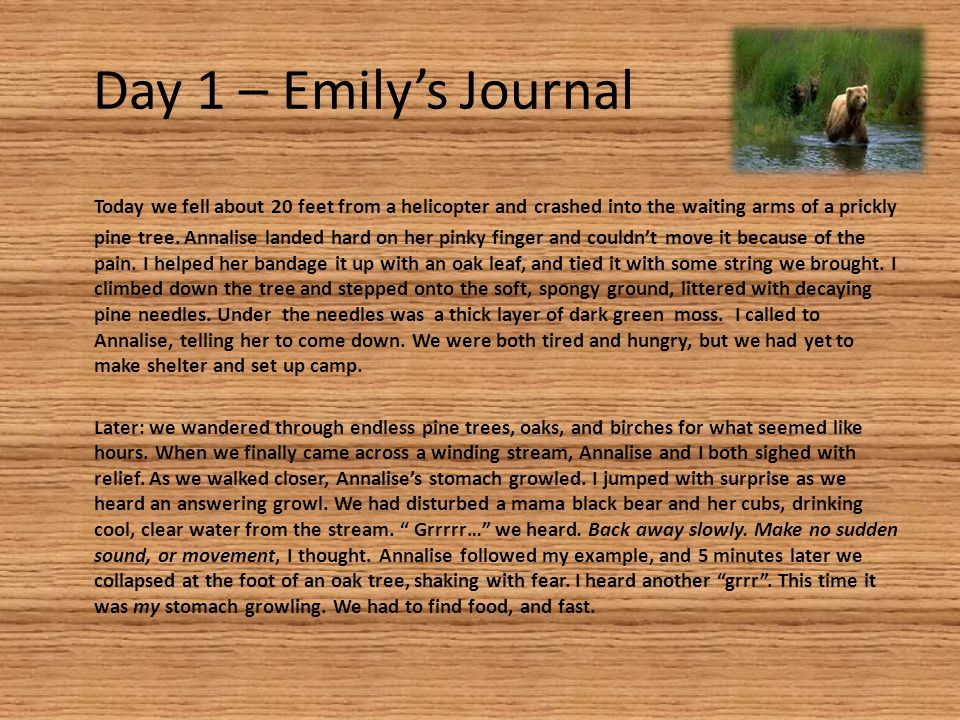Day 1 – Emily's Journal