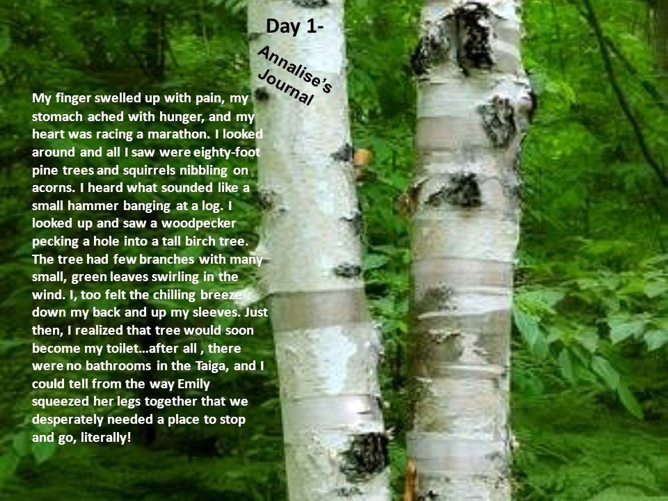 Day 1- Annalise's Journal
