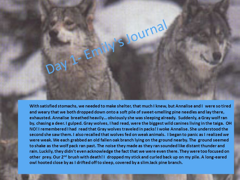 Day 1- Emily s Journal