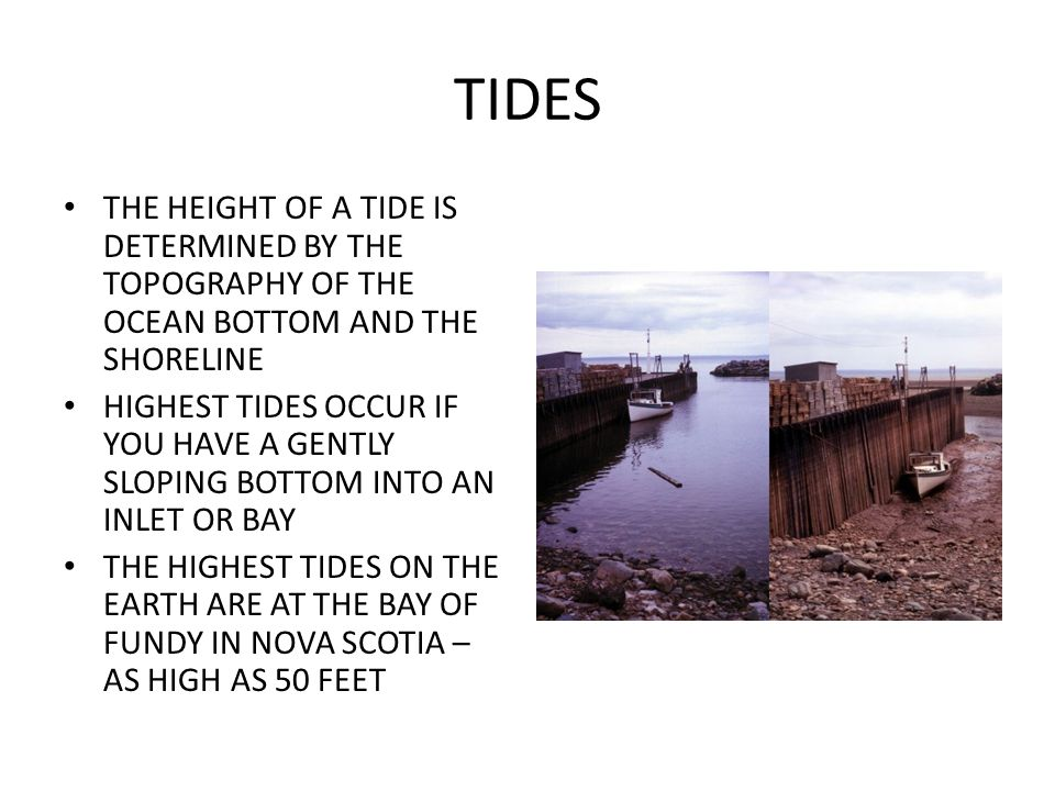 TIDES THE HEIGHT OF A TIDE IS DETERMINED BY THE TOPOGRAPHY OF THE OCEAN BOTTOM AND THE SHORELINE.