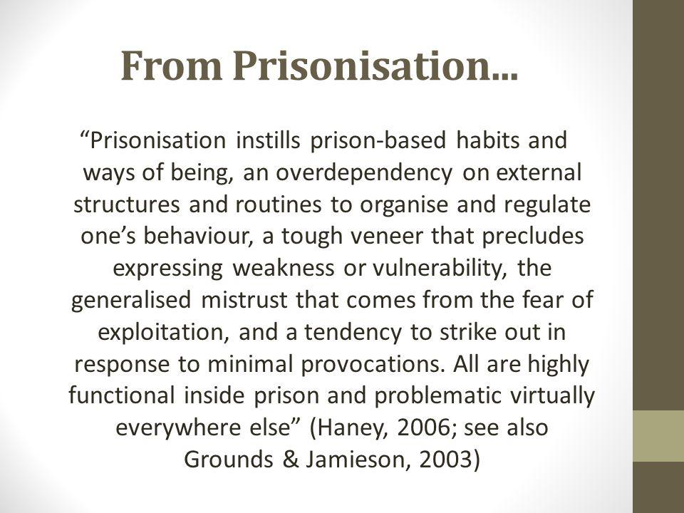From Prisonisation...