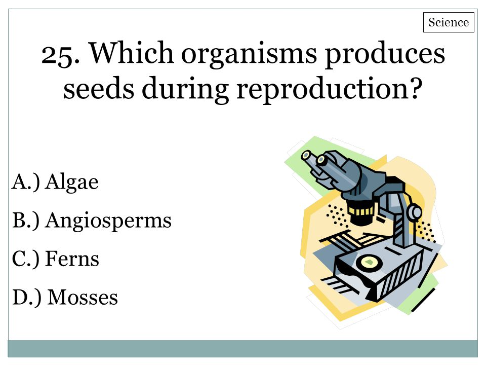 25. Which organisms produces seeds during reproduction