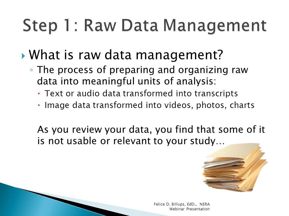 Step 1: Raw Data Management