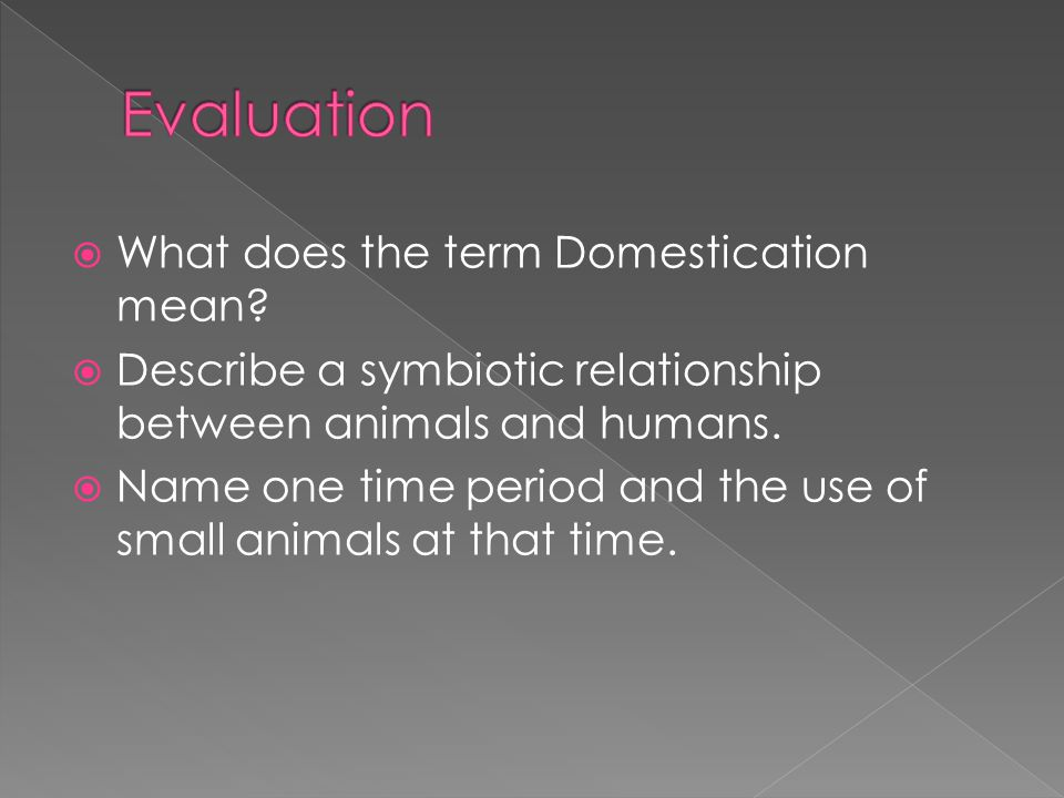 Evaluation What does the term Domestication mean