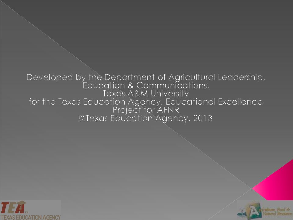 ©Texas Education Agency, 2013