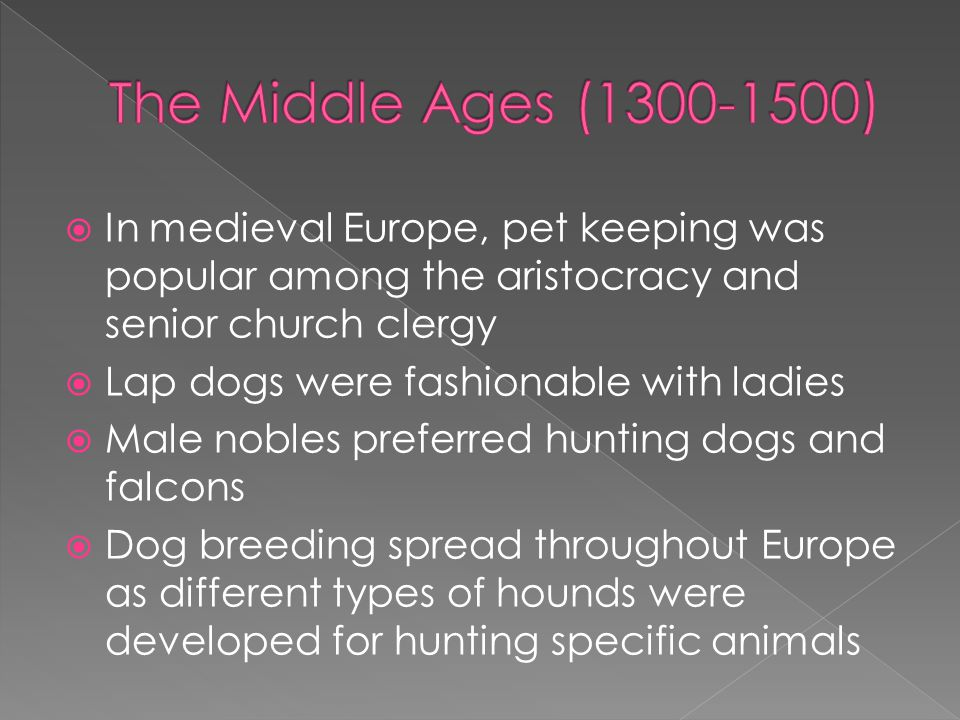 The Middle Ages (1300-1500) In medieval Europe, pet keeping was popular among the aristocracy and senior church clergy.